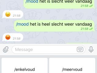 Nederlandse Taalbot